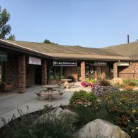 FOR SALE.. FORT COLLINS, COLORADO CHIROPRACTIC PRACTICE, IN MULTI PROVIDER CLINIC. THRIVING 35 YR PRACTICE!!