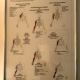 Nerve Entrapment – Upper Extremities & Lower Extremities– Framed Posters $45 for both