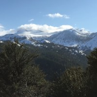 Reno/Tahoe practice for sale, High profitable $225k net to doctor, Established over 25 years, Associate doctor in place.