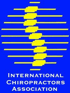 ICA Pin Design 1997