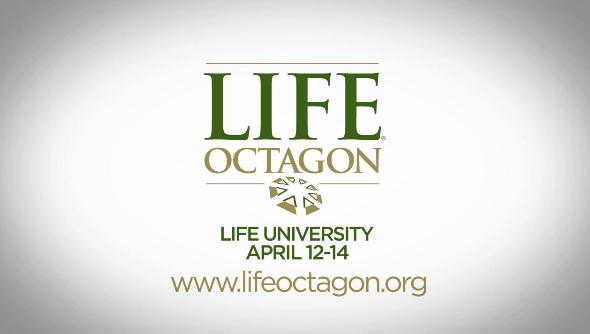 Life Octagon 2012