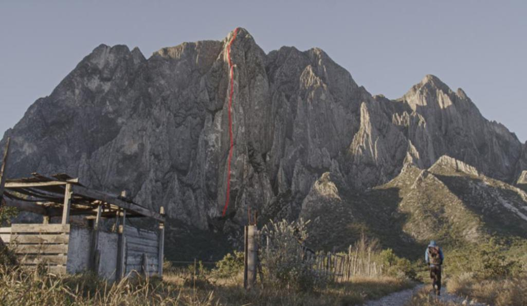news_alex_honnold_video.003