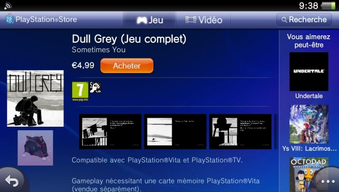 Dull Grey PS Vita