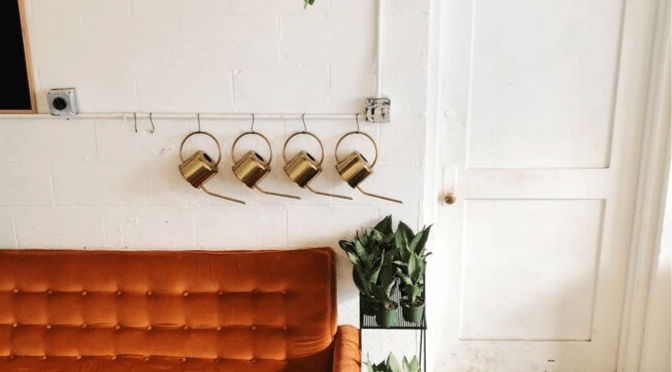 watering cans and house plants