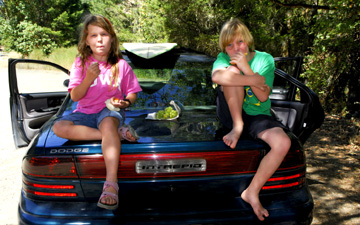 twins-picnic-on-boot01.jpg