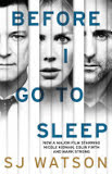 the cover of Before I Go to Sleep