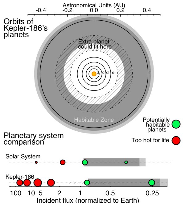Another planet in Kepler-186? | PLANETPLANET