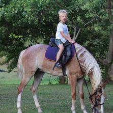 Wide shot of the boyo on horseback
