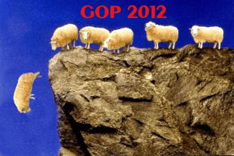 sheep-cliff1 copy