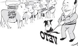 schweitzer veto