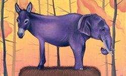 donkey_and_elephant