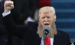 Trump terrorist