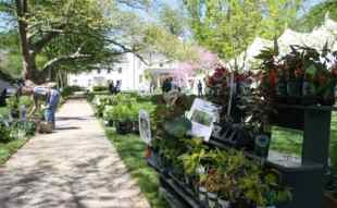 Morven's spring plant sale is also this weekend.