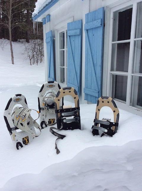 Desplazamiento en raquetas de nieve