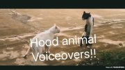 Hood Animal Voiceovers!