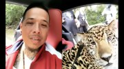 Rapper 'Jin Gates' Chillin In A Jaguar With An Actual Jaguar As His Passenger!