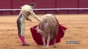 Matador Gets Gored In The Groin By A Bull And Is Later Rushed To The Hospital!