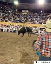 Sheesh: Dude Gets Rocked During Bull Ride!