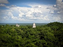 Travel Photo: Guatemala - Overview of the Jungle around the Ruins of Tikal