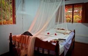 Finca Magdalena Ometepe Nicaragua Private Room