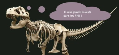 Dynosaure FNB