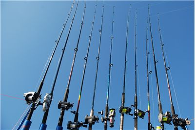 Best Fishing Rod Variety Online
