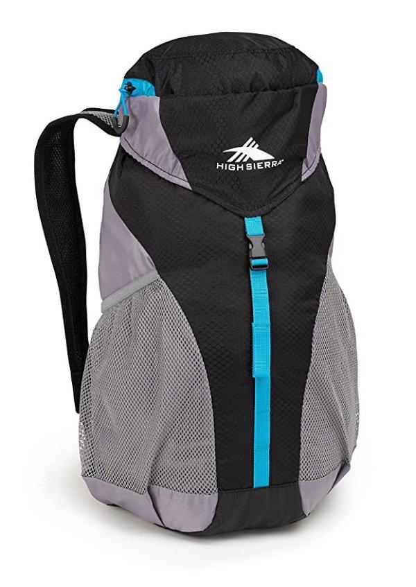 High Sierra Sport 20L Hiking Backpack