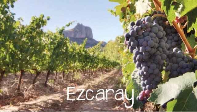 Apartamentos en Ezcaray para disfrutar del enoturismo