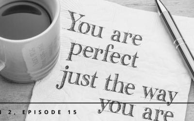 S2E15 – Dropping Perfectionism in Pursuit of Progress