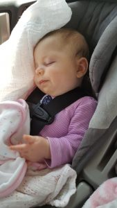 Cora sleeping while driving.