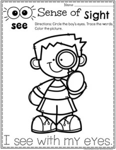 Sense of Sight Coloring Page for Preschool