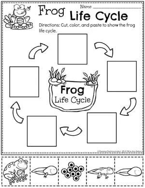 Frog Life Cycle Worksheets - Preschool Worksheets Pond Theme#preschool #preschoolworksheets #pondtheme #planningplaytime