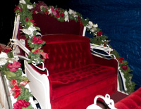 Ruby-Carriage-8-Seat-with-Christmas-Decorations-1024x768