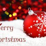 Christmas Handyman Service