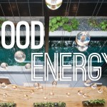 Create an Energy Efficient Home