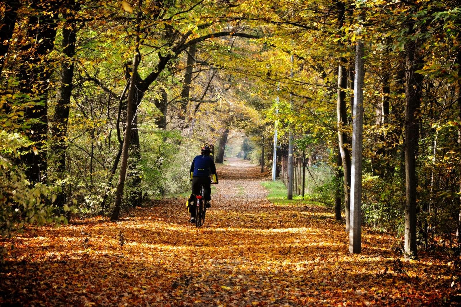 bike trips in poland