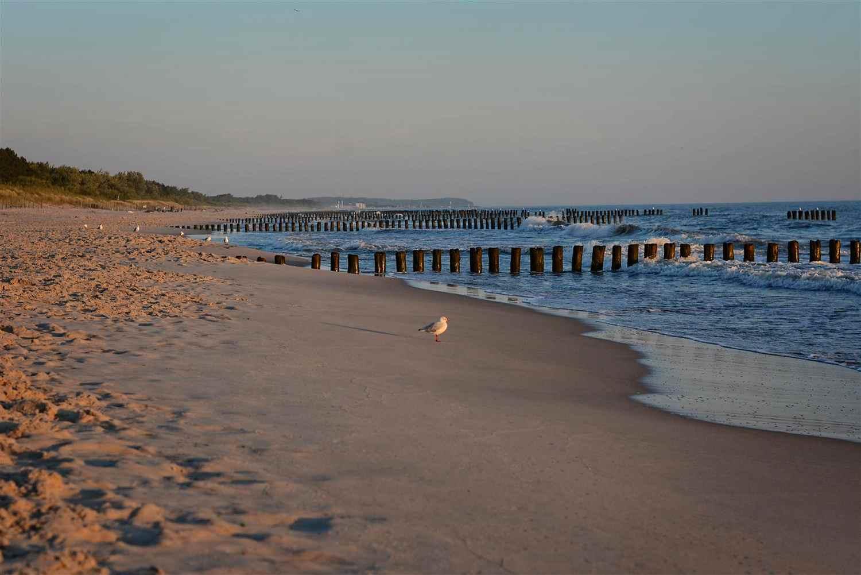 hel peninsula summer at polish sea