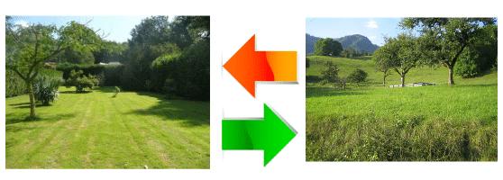 transfert-COS-terrains