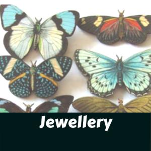 Butterflies rev 2