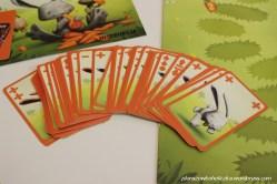 52 karty ruchu