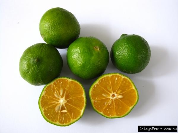 List Citrus Large Fruit
