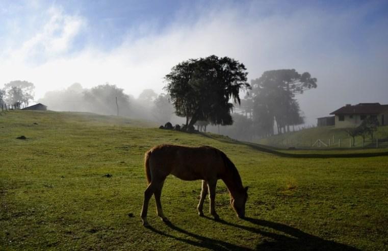 Inverno no Hemisfério Sul começa no dia 21 de junho