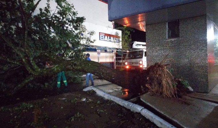 Atingido por granizo, governo de MS decreta situação de emergência em Naviraí