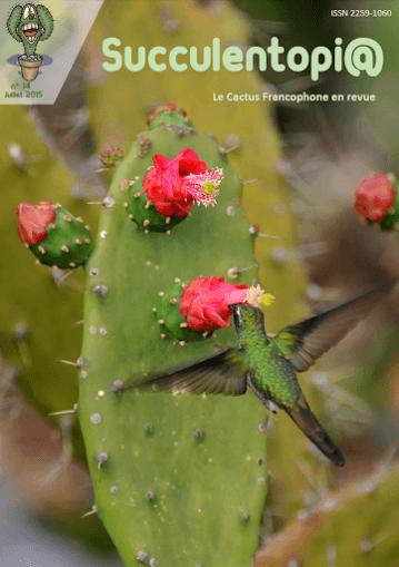 Cactus Revista PDF