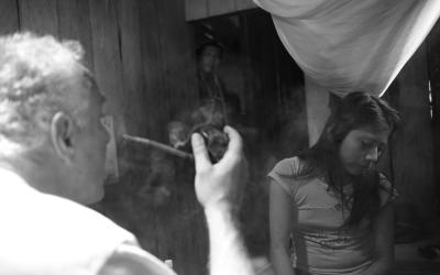 Ayahuasca en el cine: encuentros y desencuentros