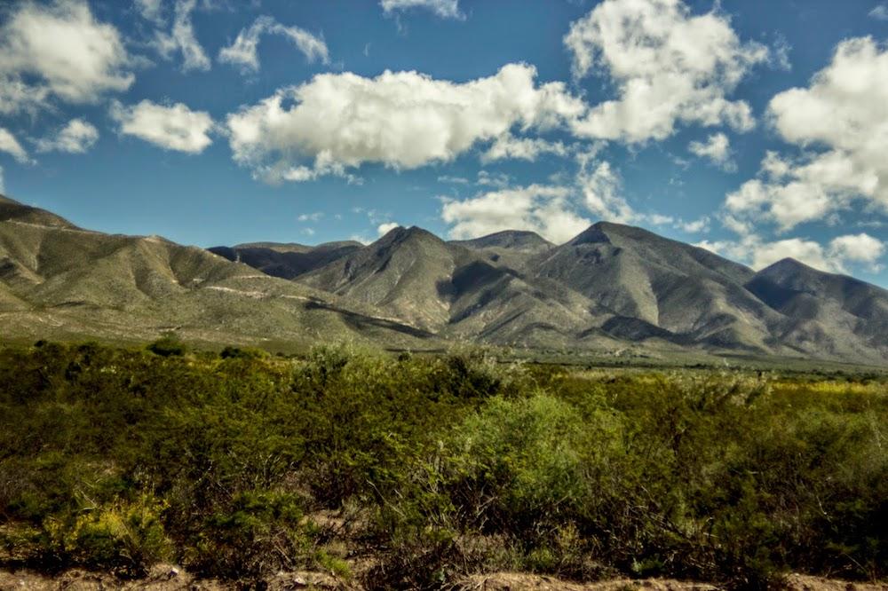 Explotación, Usos y Protección para las Plantas Sagradas: la Patrimonialización de Wirikuta y el Peyote