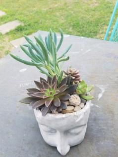 outdoor arrangement
