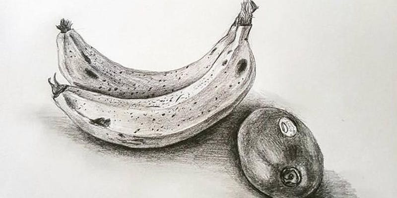The basics of drawing – from line to still life