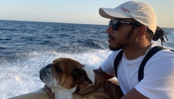 Lewis Hamilton with his vegan dog Roscoe