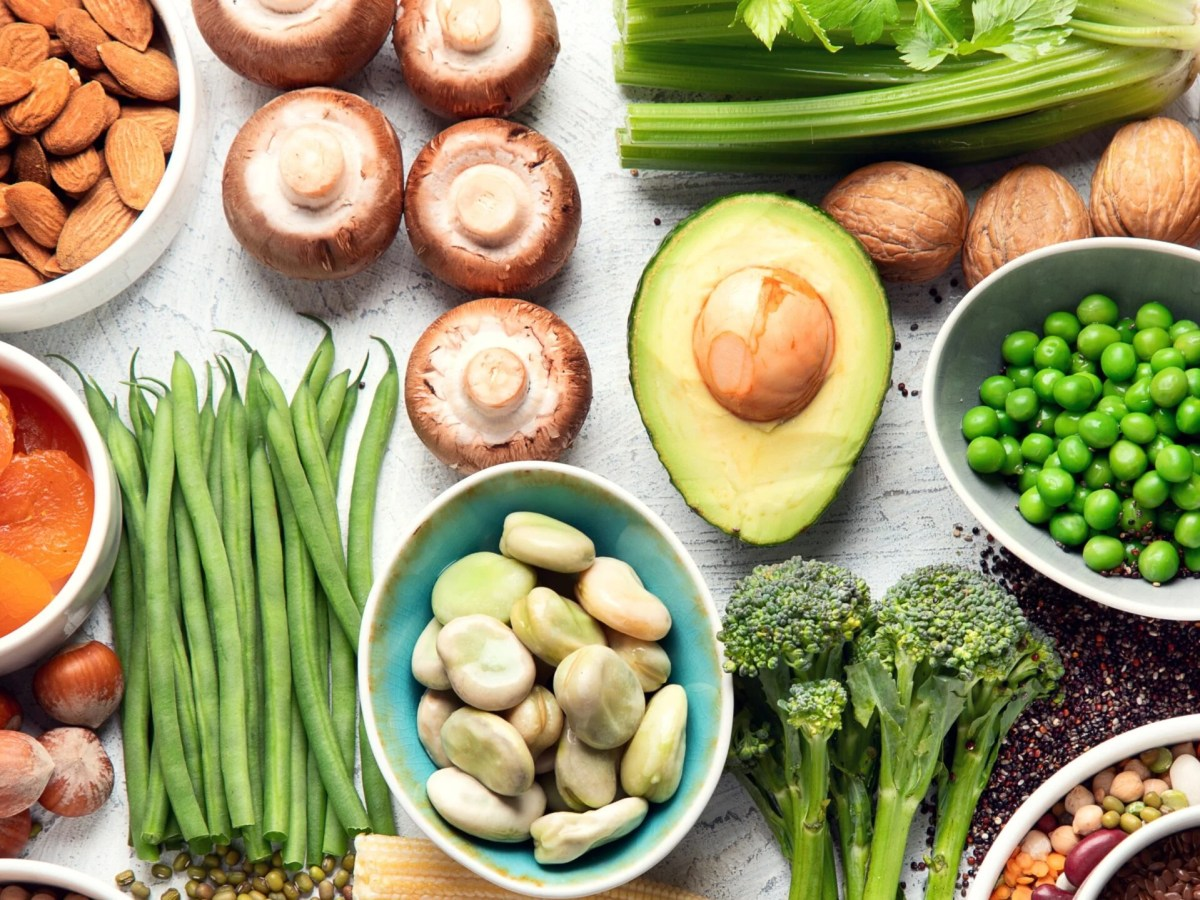 Plant based foods high in protein